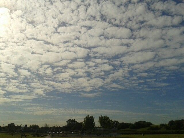 Cotton Clouds