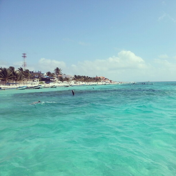 105 best riviera maya and nearby pictures images on for Puerto morelos fishing