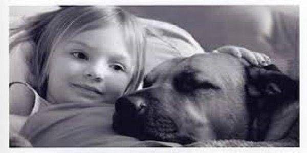 Bambini e animali: un rapporto che aiuta a crescere
