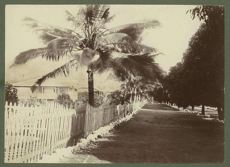 Picture of / about 'Palm Island' Queensland - Residential quarters on Palm Island, 1932