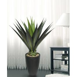 @Overstock.com - Laura Ashley 44 Inch Realistic Silk Giant Aloe Plant with Contemporary Planter - Materials: Plastic, polyester, pebbles, foam, glue, wire, fiberstonePlant type: Agave AloeDimensions: 44 inches High Roughly 14 inches Diameter (depending on arrangement of foliage)  http://www.overstock.com/Home-Garden/Laura-Ashley-44-Inch-Realistic-Silk-Giant-Aloe-Plant-with-Contemporary-Planter/6378740/product.html?CID=214117 $161.99