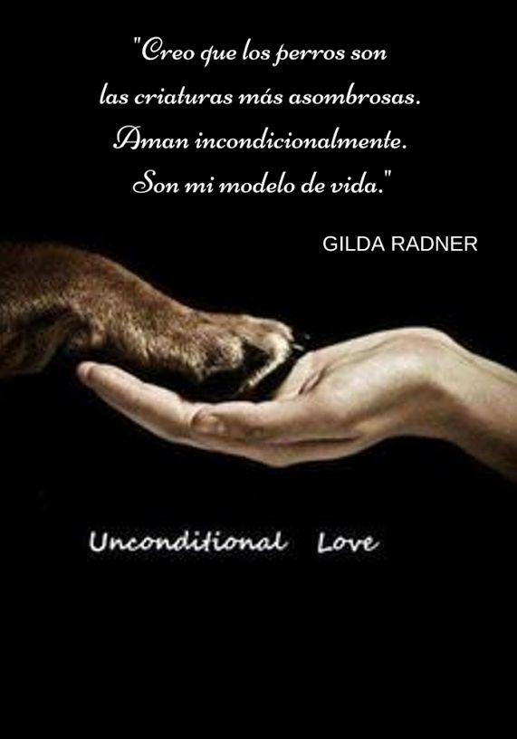 GEDVA Gestión Emocional del Vínculo Animal: Google+
