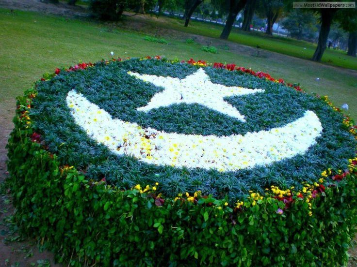 Pakistan Flag Art