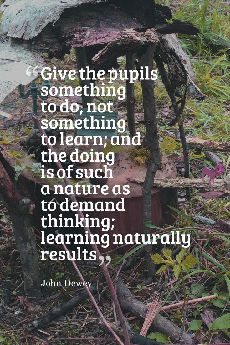 Inspired Professional Learning in and with Nature - Piaget, Dewey, etc.