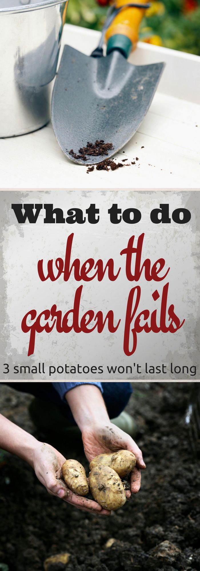 Even experienced gardeners have failed gardens. When that happens, have a plan.