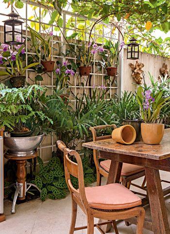 Os exemplares floridos são expostos na treliça da varanda.  O espaço tem palmeiras-ráfia, com marantas na base.  Há ainda o maracujá, uma trepadeira de crescimento vigoroso,  que cobre a cobertura de vidro e reduz a incidência de luz no  local