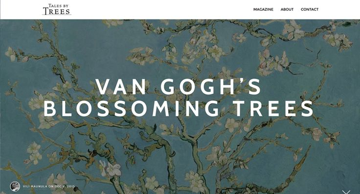 The Dutch painter Vincent van Gogh (1853-1890) is probably best known for his stormy wheat fields, vivid night skies, numerous self-portraits and… well, for cutting his own ear off, but did you know that he was also one of the most accomplished painters of tree portraiture? A Tales by Trees article by Vili Maunula. Read from: http://www.talesbytrees.com/van-goghs-blossoming-trees/