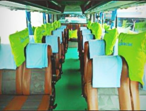 Sewa Bus Pariwisata Seat 31 di Jogja   Sewa Bus Yogyakarta