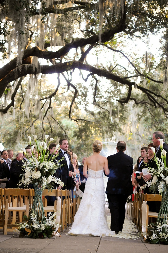 Ever Since I Saw The Movie Last Song Ive Wanted To Have A Southern Wedding On Plantation With Spanish Moss In Trees