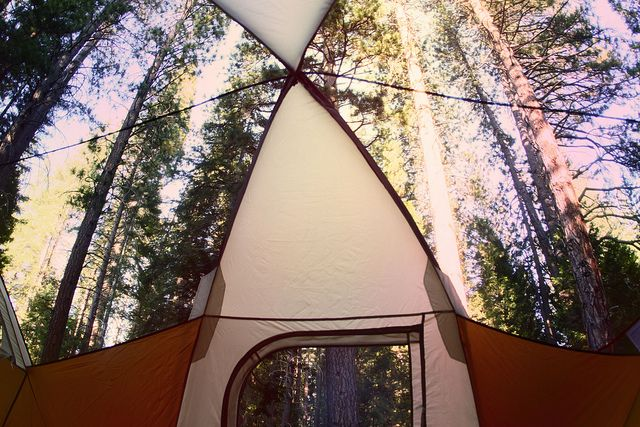 the only way to tent: Forests, Camps Vibes, Tents View, Places, Camps Trips, Summer Dogs, Adventure Inspiration, Rain, Outdoor Desire