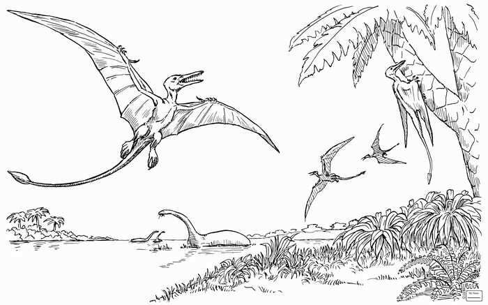 Pterodactyl Coloring Page Dinosaur Coloring Dinosaur Coloring Pages Animal Coloring Pages