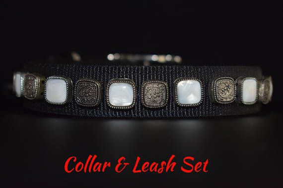 "Dog Collar & Leash Set: Collar 18""-20"" by 1"". Leash 6ft by 1"". Mother-of-Pearl Dog Collar and Leash, Fancy Dog Collar, Cool Dog Collar"