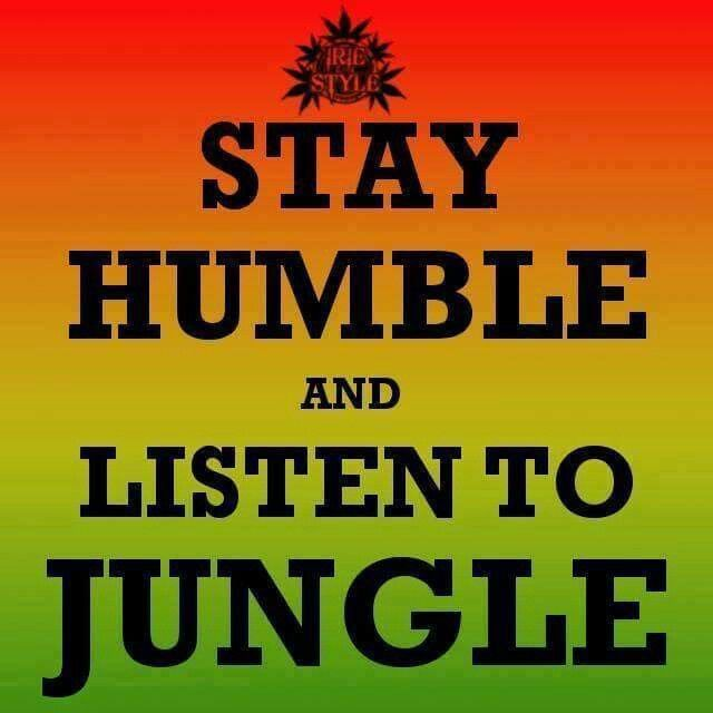 Stay humble and listen to Jungle
