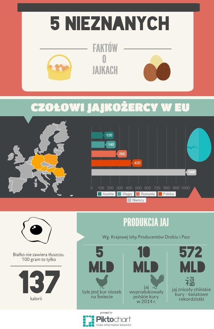 5 nieznanych faktów o jajach | Piktochart Infographic Editor