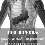 The Liver: Your Most Important Fat Burning Organ!