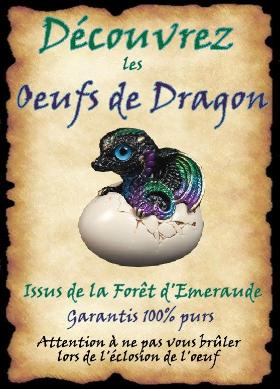 affiche oeufs dragon                                                                                                                                                                                 Plus
