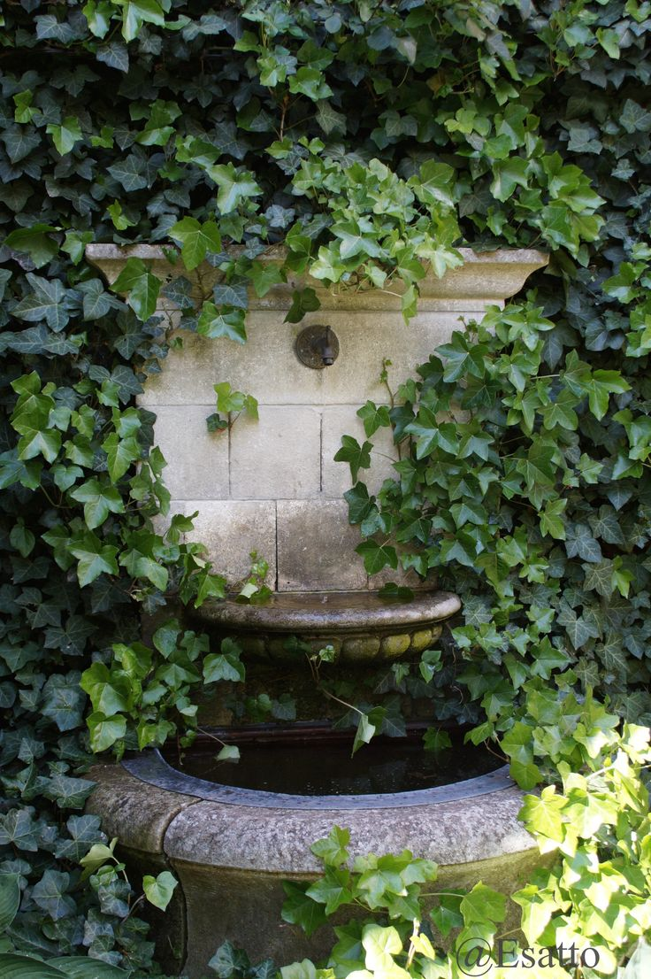 Outdoor wall decor sussex wall fountain - Classic Greenery And Vines Reminds Me Of The Style We Are Going For And Garden Streamgarden Watergarden Fountainswater Fountainsoutdoor Wall