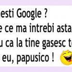 Te numesti Google, pisi ?