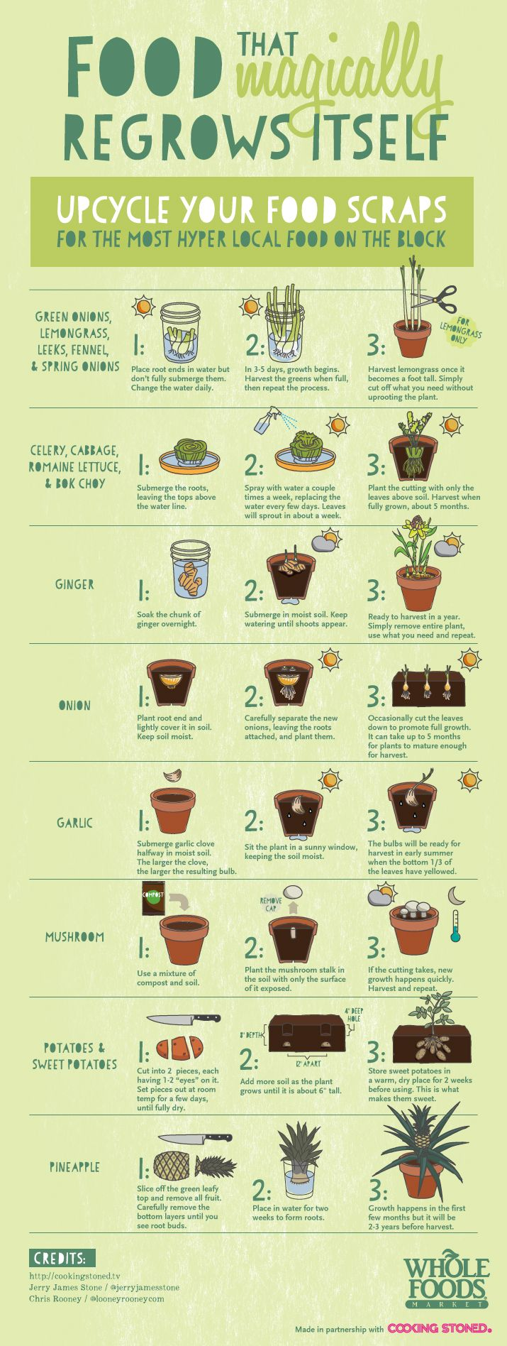 We're doing this with lettuce right now!  Be sure to upcycle your food scraps... All of this food will magically regrow itself!