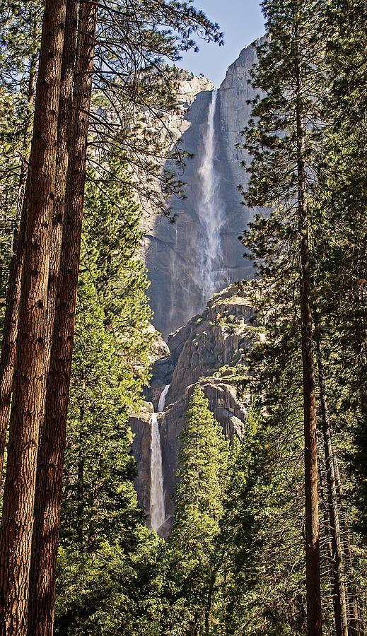 ✯ Yosemite Falls - California