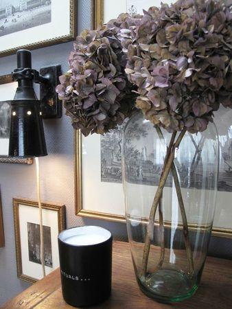 Hortensias: Détails Déco, Interior Decoration, Détail Déco, Deco Gift Ideas, Hortensia Séchés, Nice, Hortensias Séchés, Interior Decorat, Hydrangeas
