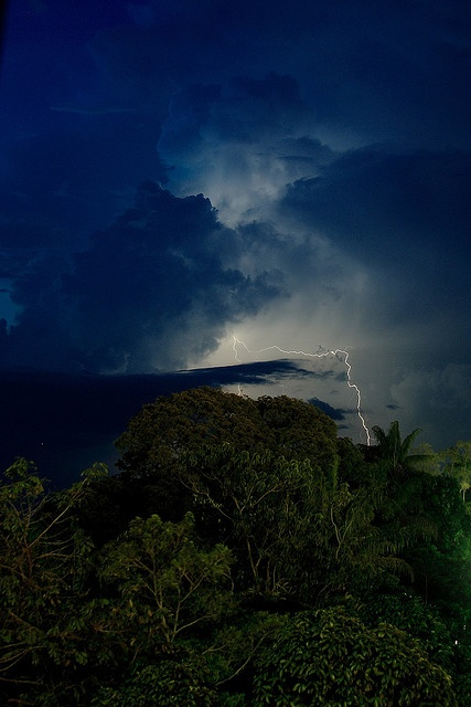 Manaus, Amazonas. When in Manaus is 2007 we experienced the most amazing thunder, lightning & rain. Spectacular! Nature in all it's glory.