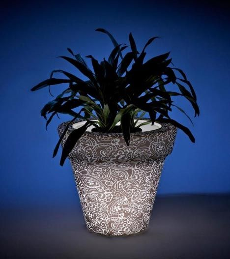 rust oleum glow in the dark paint flower pots. led light pots: plant a colorful glow-in-the-dark garden rust oleum glow in the dark paint flower pots
