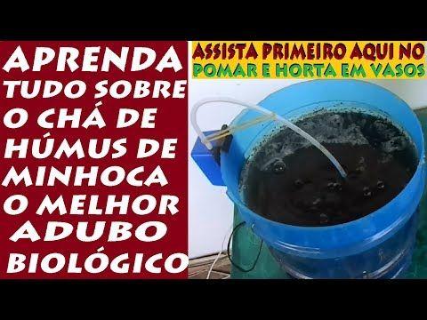 CHÁ DE HÚMUS DE MINHOCA, O QUE É, E COMO FAZER? - YouTube