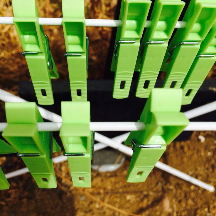Wasknijpers bij tipi Verde! #groen