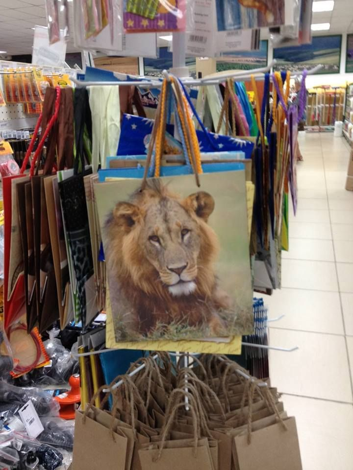 Wildlife gift bags - Lion