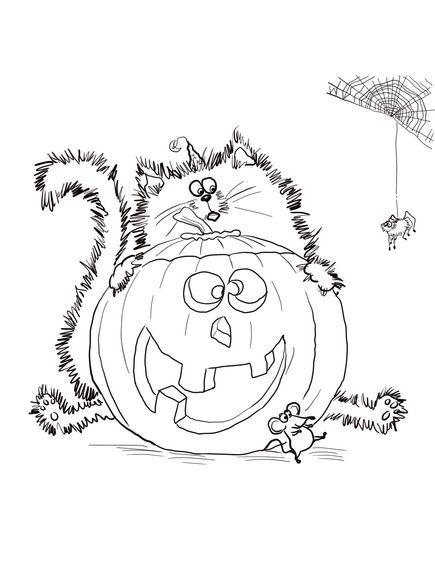 Best 25 Cat Pumpkin Ideas