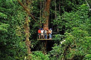 Vacation trips for exploring the wildlife of Panama #Mega_vacation, #Mega_vacations
