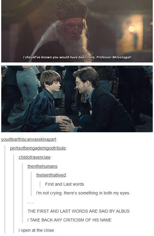 Tumblr Harry Potter