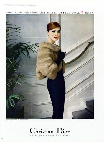 FUR STOLE - 1957 EMBA desert-gold BY CHRISTIAN DIOR- photo by virginia thoren.    #Stole #VintageStole  Read blogpost at http://www.whitestole.com/1/post/2013/12/the-small-embrace-bolero-stole-became-a-lasting-fashion.html See entire vintage collection at www.whitestole.com