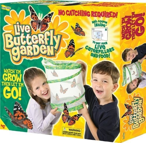 Insect Lore Live Butterfly Garden: http://www.amazon.com/Insect-Lore-Live-Butterfly-Garden/dp/B00000ISC5/?tag=done0d4-20