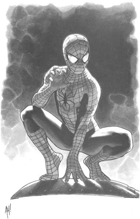 Spider-Man by Adam Hughes