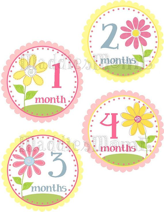 Monthly Baby Girl Stickers, Milestone Stickers, Baby Month Stickers, Monthly Bodysuit Sticker, Monthly Stickers Pottery Barn Flowers (Kylie) on Etsy, $8.99