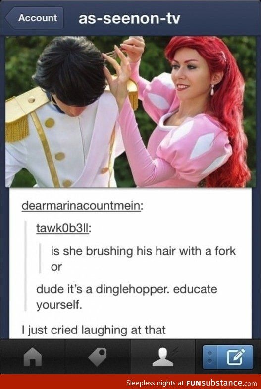 """Hahah """"It's called a dinglehopper. Educate yourself."""" Lol Disney fans at their best :)"""