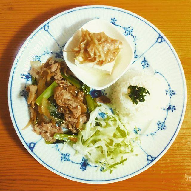 🍴豆腐の薬味和え 🍴豚肉・まいたけ・小松菜のスタミナ焼き 🍴キャベツ 🍴ごはん . 旦那さんがスタミナ焼きというのを作ってくれました♪ ほのかに酸味が聞いててごはんと合います。 週末にごはん作ってくれるのはものすごく嬉しいです😆 . 💡最近知ったのですが、食後にフルーツを一緒に取るのは消化に負担がかかるそうです。 おやつとして別で食べた方が良いそうですよ!暑い時期、フルーツたくさん食べたいですね♪  #冷や奴#旦那料理#体をあたためる#健康#栄養#ランチ#朝ごはん#ヘルシー#野菜たっぷり#肉#おうちごはん#自炊#料理#デリスタグラマー#クッキングラム#ロイヤルコペンハーゲン#ロイコペ#テーブルコーディネート#おしゃれ#食器 #royalcopenhagen#japan #foodpics#cooking#table#tablecordinate #instafood#delicious#vegetables#healthyfood