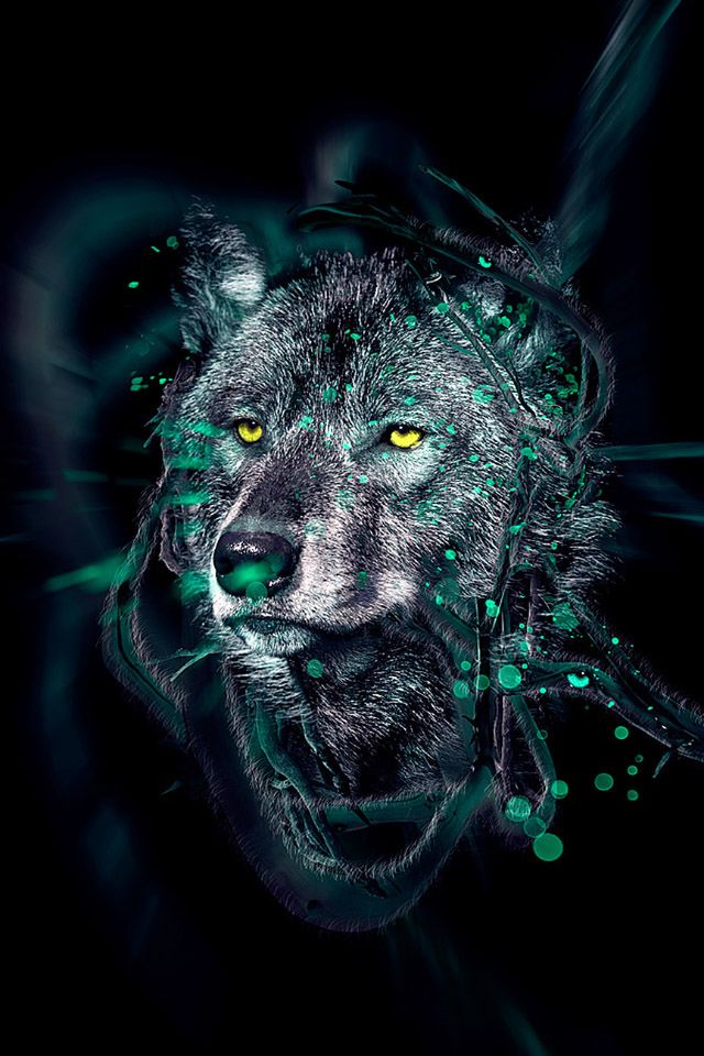 Wolf #iPhone 4s #Wallpaper
