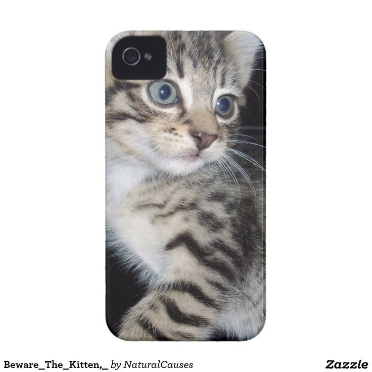 Beware_The_Kitten,_ iPhone 4 Covers