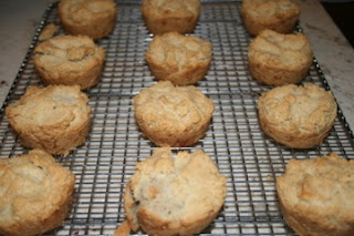 "paleo biscuits?  I""ll give 'em a try."