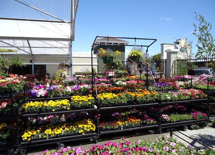 BenchLine Units RW Rogers Garden center, Garden, Plants