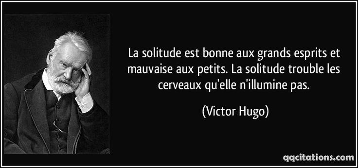La solitude est bonne aux grands esprits et mauvaise aux petits. La solitude trouble les cerveaux qu'elle n'illumine pas. - Victor Hugo