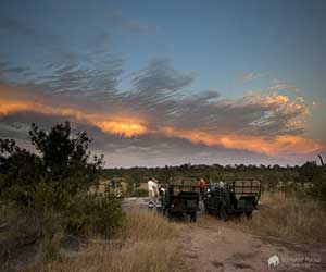 Sundowners on Sabi Sands game reserve sunset drive