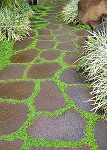 Lava rock stepping stones patio garden path ideas for Lava rock pavers