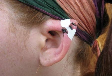 Elf Ear Operation, looks painful! but I am sure it would probably look neat afterwards.... but still unsure...