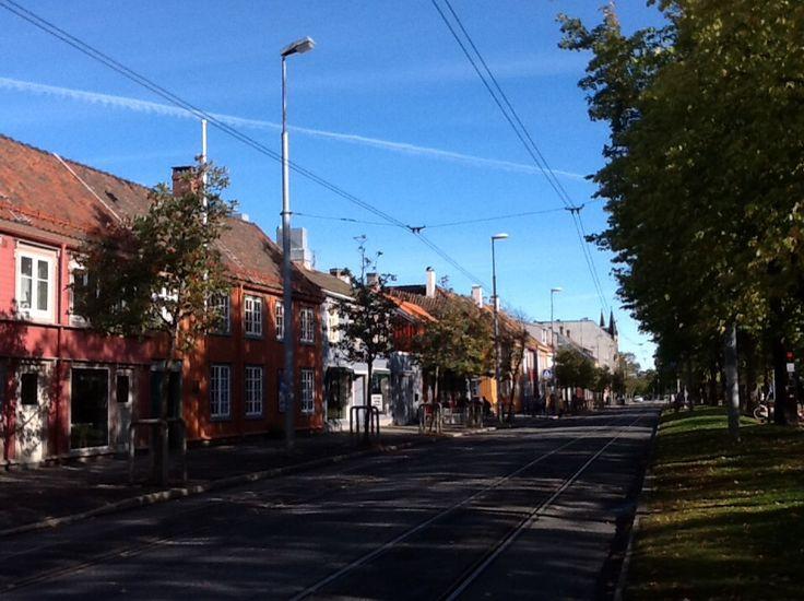 Ila, #Trondheim