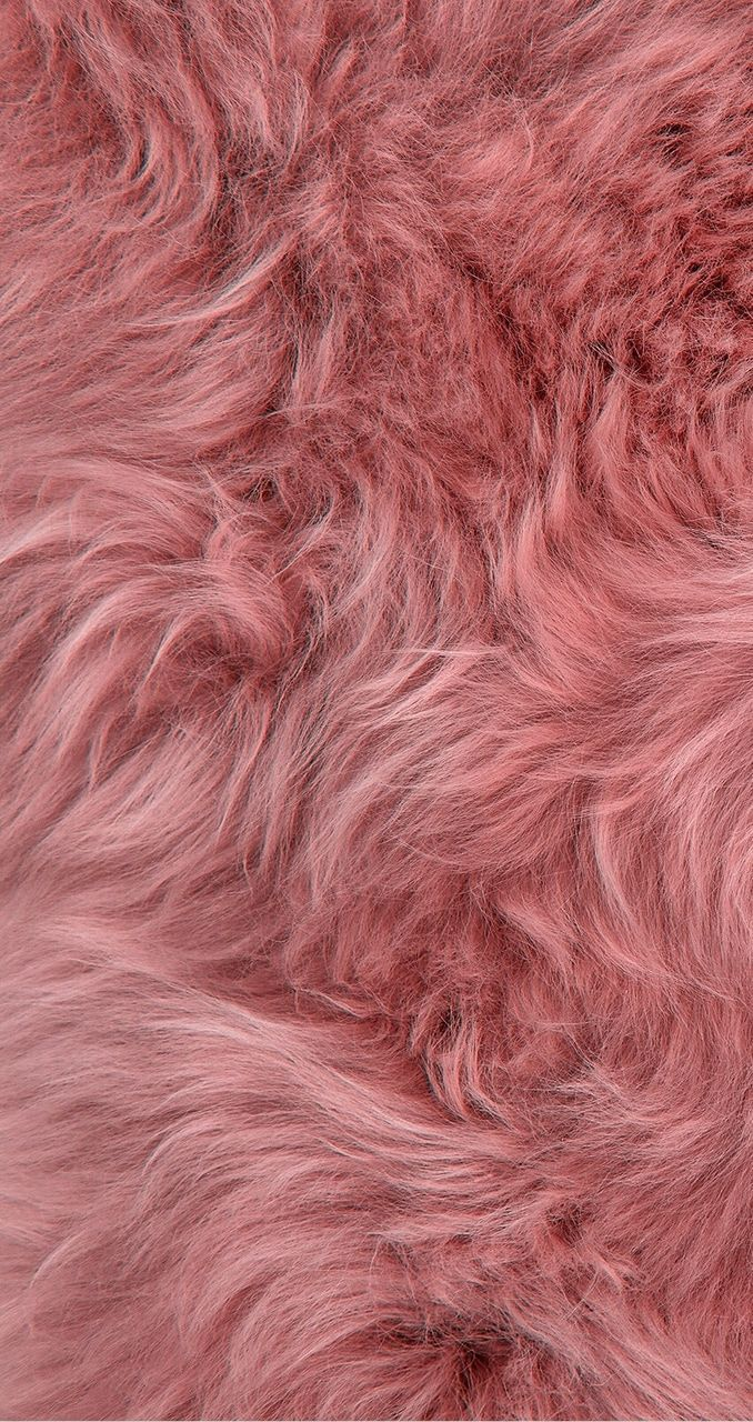 Pin By Amy Lee On Color Pinks Pink Wallpaper Iphone Pink Fur Wallpaper Pink Wallpaper Aesthetic pink fur wallpaper hd