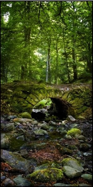 """~Fairy Bridge!  (Reelig Glen, Scotland) """"The bridge and grotto in Reelig Glen, near Inverness. The story goes that they were built by the fairies living in the wood, which is why locals call it Fairy Glen rather than Reelig""""~"""